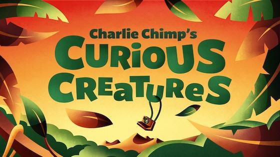 Charlie Chimps Curious Creatures