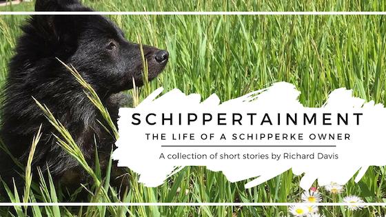 Schippertainment: The life of a Schipperke owner
