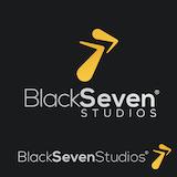 Black Seven Studios