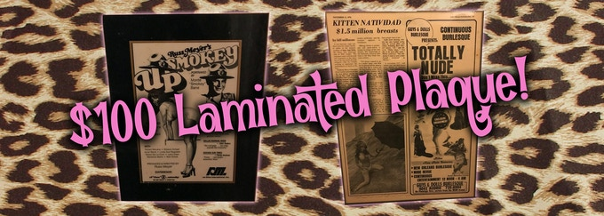Vintage 1 of a kind Gorgeous Keepsakes 0ver 30 to choose from Kitten's Press & Newspaper clippings laminated on wooden plaques!