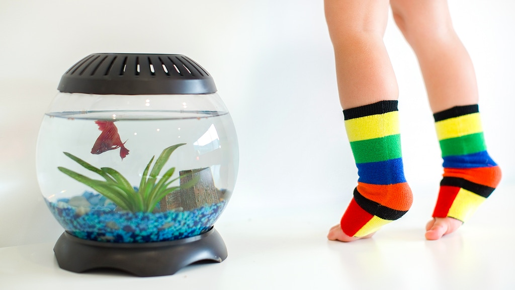 Ultimate Play Sock! Stop Slipping & Start Flipping | SOCKABU project video thumbnail