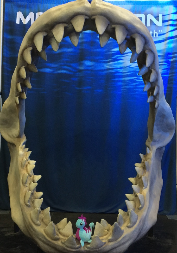 Pleasie compared to the mouth of a megalodon