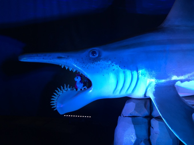 Bad life choices with a Helicoprion bessonovi