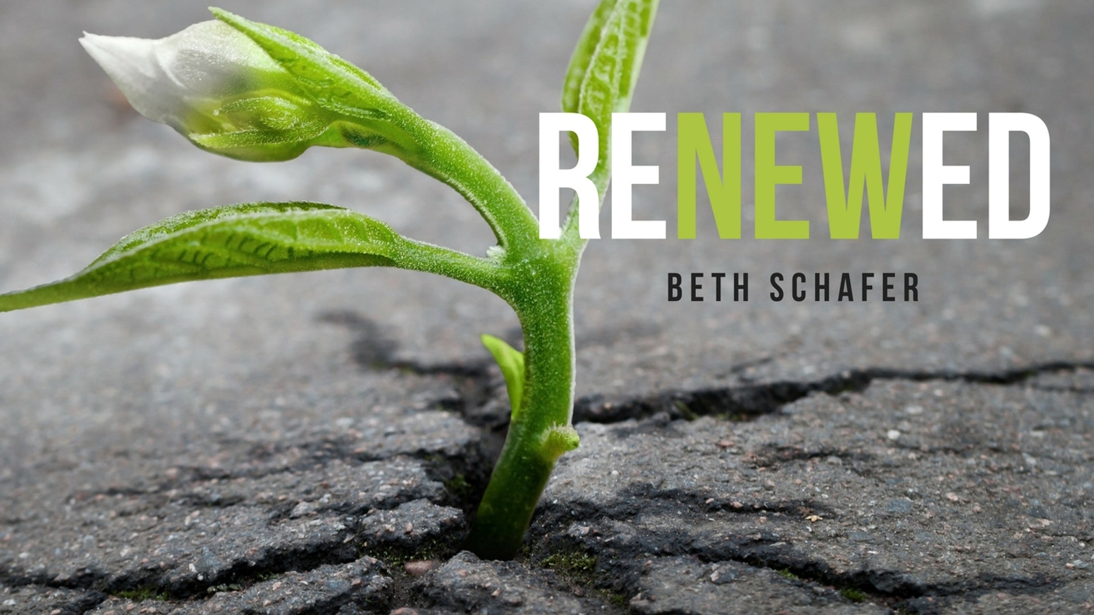 Be a Part of Beth Schafer's next Album - RENEWED by Beth