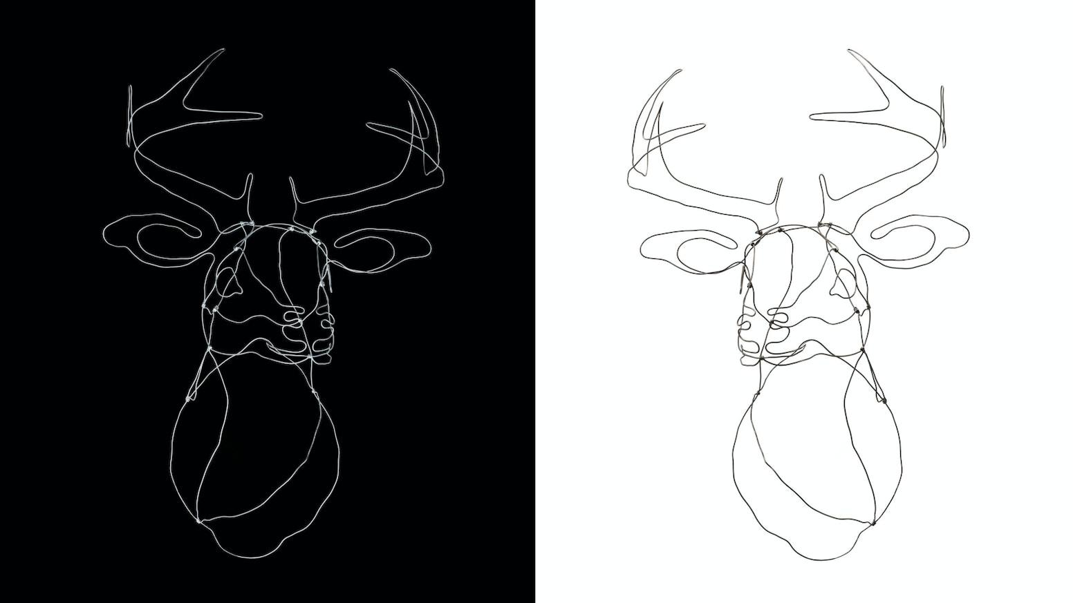 Make/100: Animal Wire Sculptures by Maxwell True Rasor — Kickstarter