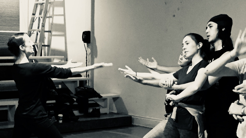 Support the Sokolow Theatre/Dance Ensemble 2018 Season project video thumbnail