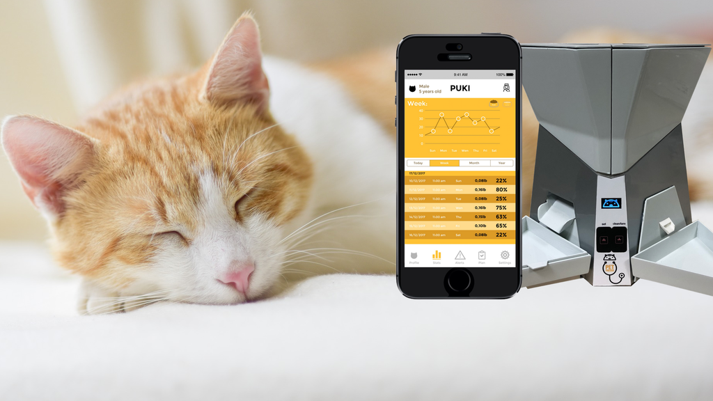 First Smart Care Device for Cats: health, diet, and more
