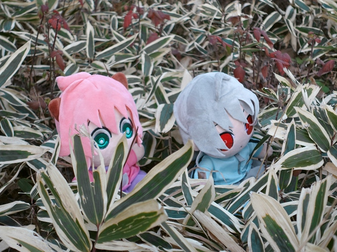 Poppo & Suguri enjoying the nature