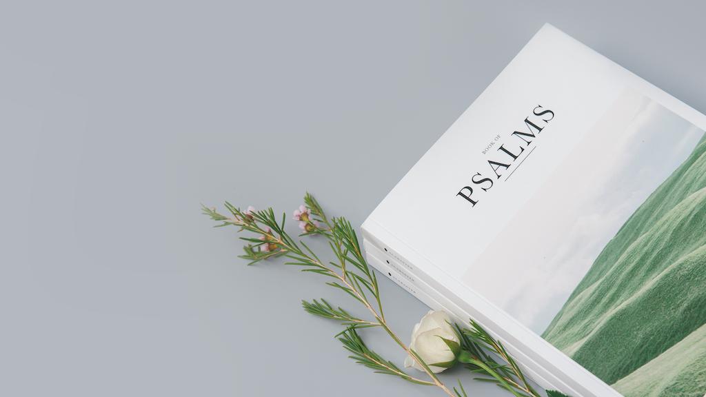 The Bible Beautiful - Psalms