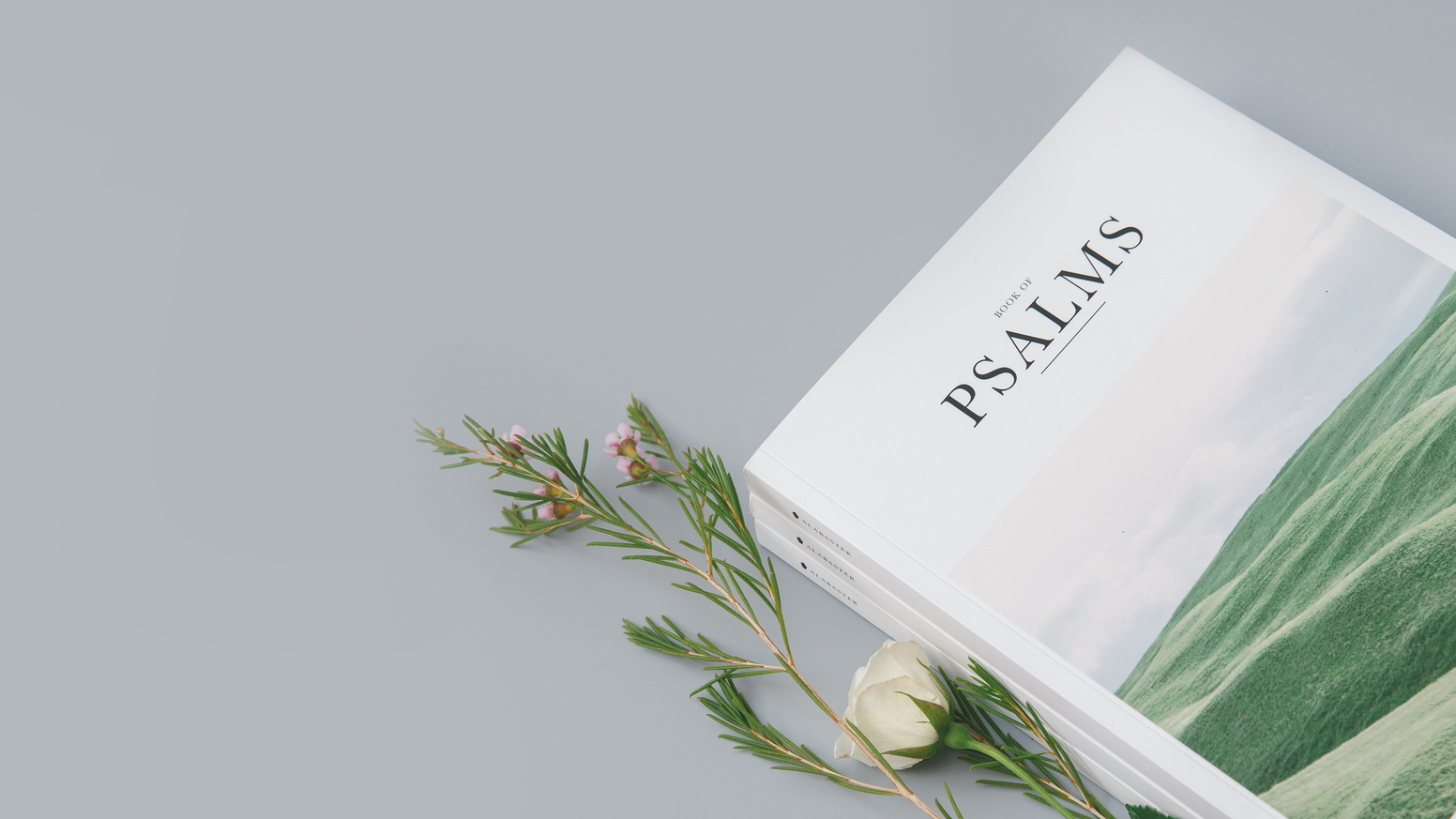 Visual imagery and thoughtful design integrated within the text of The Book of Psalms, for a beautiful reading experience.