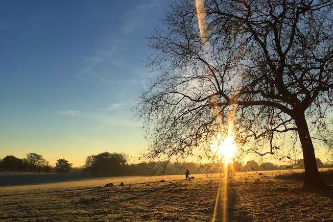 Brixton Sunrise