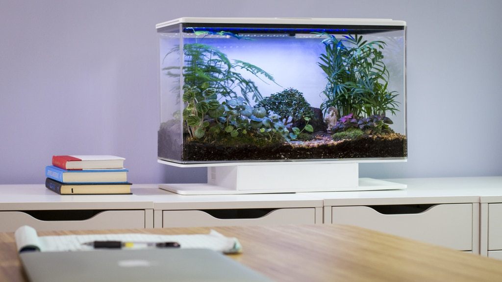 SmartTerra: a Smart Terrarium with Customizable Environments project video thumbnail