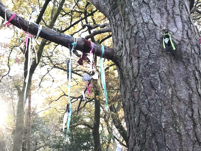 The clooty tree at Doon fairie hill