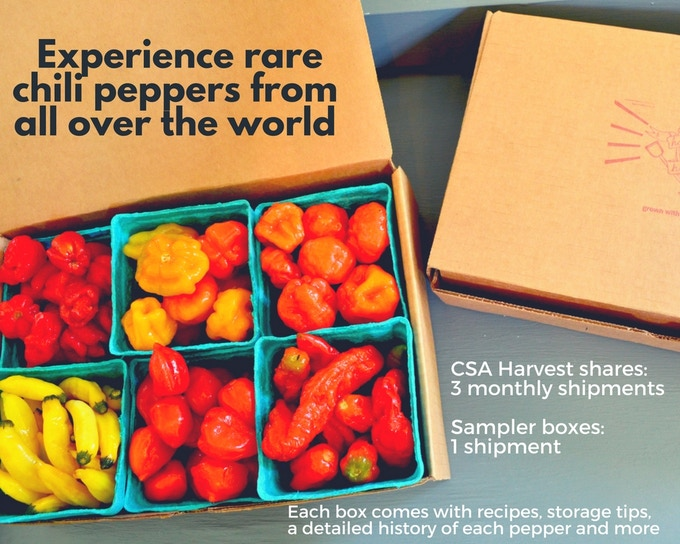 Make 100 Harvest Box: Experience the World's Hottest Peppers
