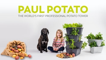 PAUL POTATO - the world's first professional potato tower