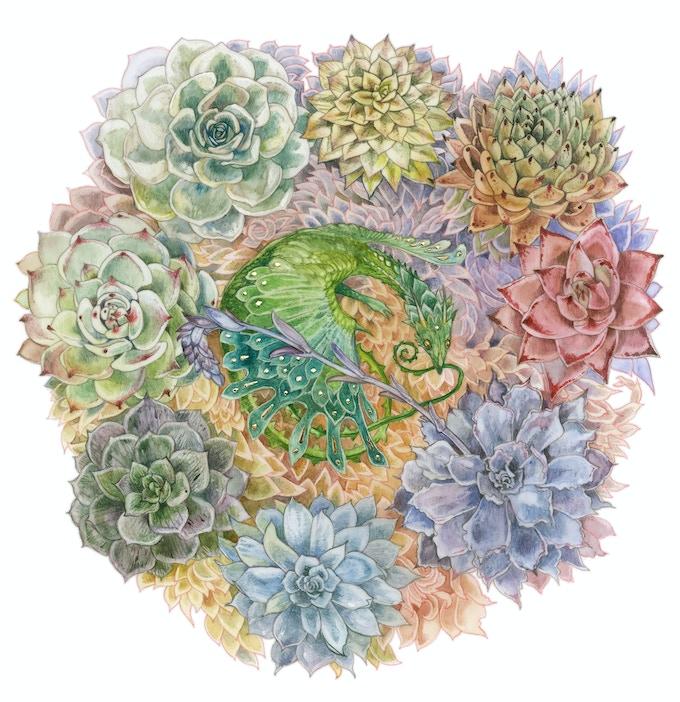 Print #1: Succulent Rainbow