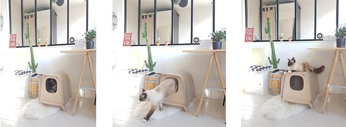 Invitez votre animal dans un endroit cosy et design qui s'intègre à la perfection à tous les styles d'intérieur (scandinave, industriel, boho, minimaliste, urban jungle…)