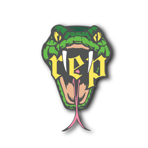 Taylor Swift Reputation Inspired Snake Enamel Pin By Tcp