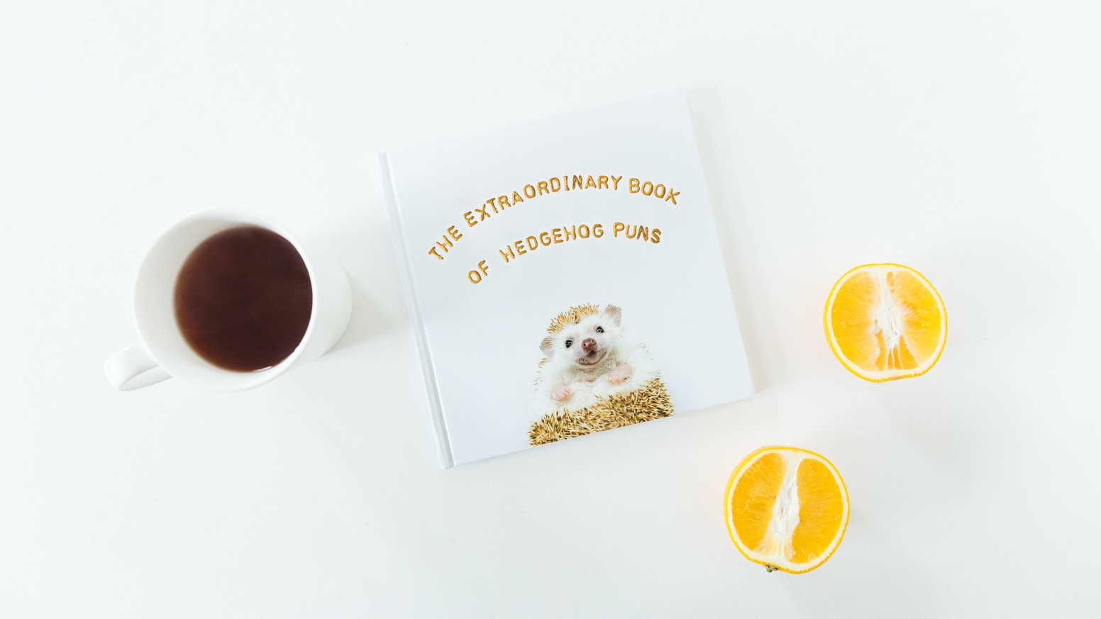 The Extraordinary Book of Hedgehog Puns by Sophia Hsin — Kickstarter