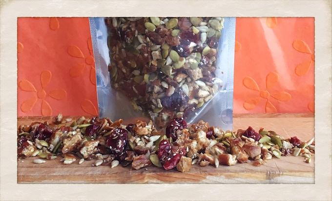 ZEGO Seed+Fruit Mix-Ins: Vegan Paleo Allergy Friendly + Yum