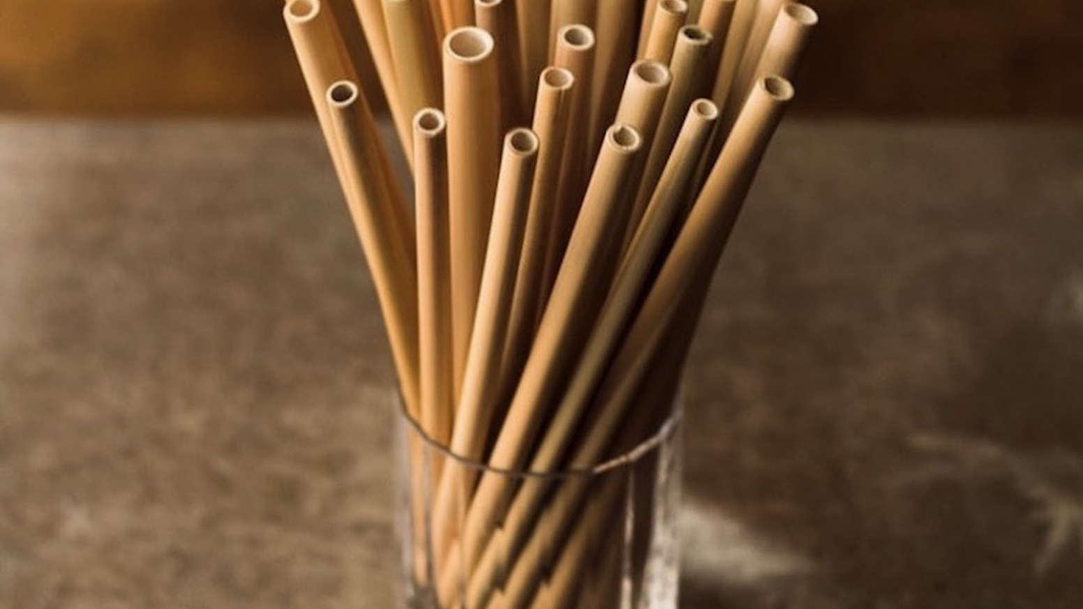 Bamboo Straws Coconut Bowls An End To Plastic By Maliha Rana