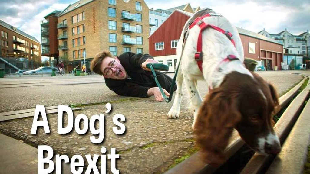 The Little Things Theatre presents: A Dog's Brexit project video thumbnail
