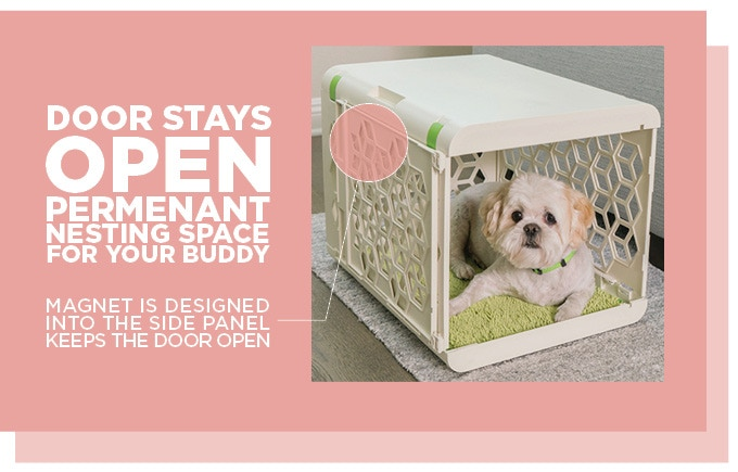 Pawd Pet Space Reinvented Dog Crate By Amy Kim Of