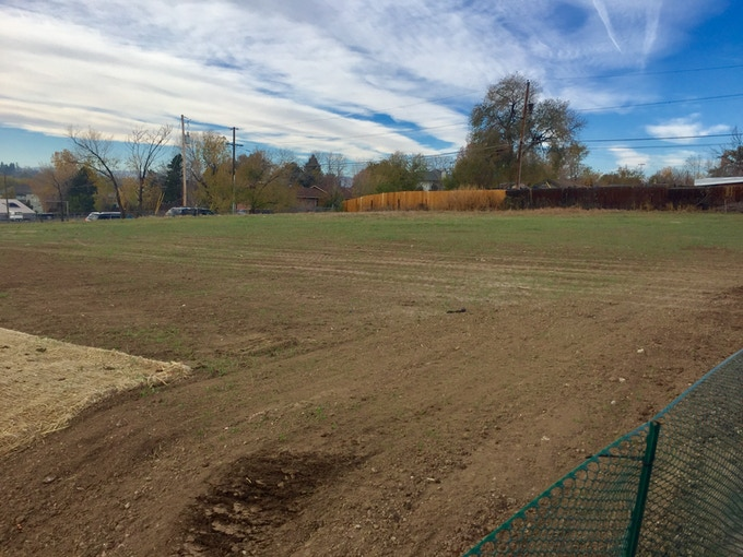 This open field will be transformed into our adventure playground.