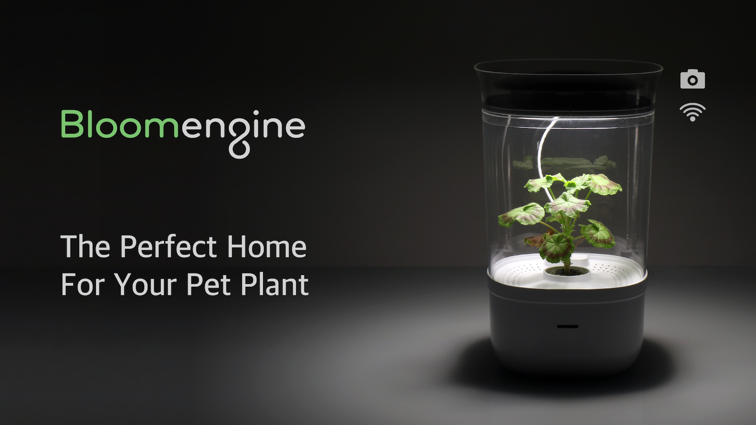 Bloomengine allows you to care for your pet plant stress-free by remotely adjusting water, sunlight, and air circulation levels.