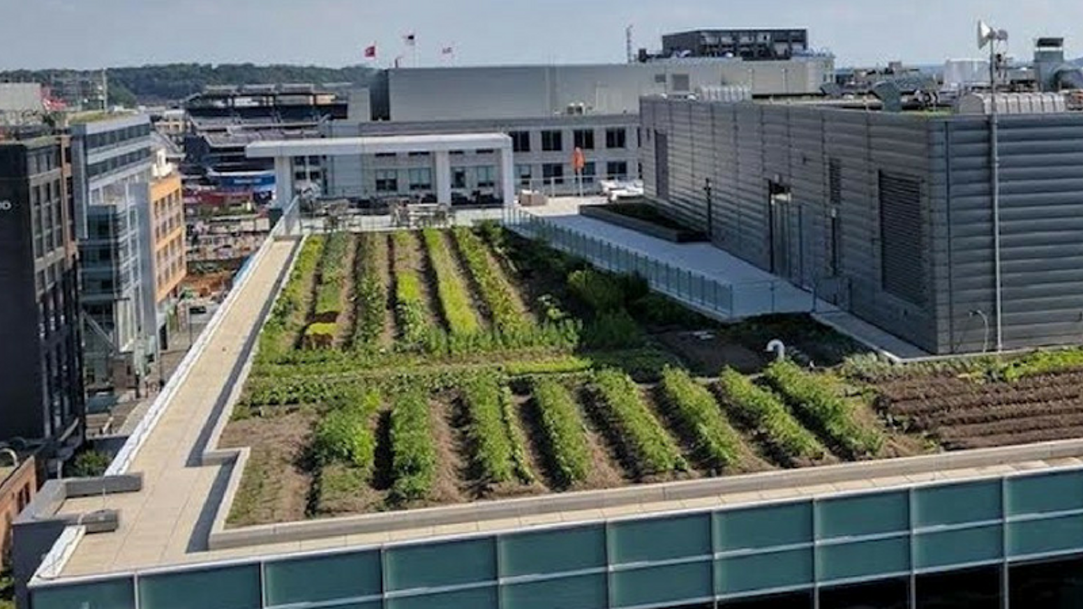 We're establishing agriculture as a fixture of city life by turning underutilized rooftops into productive farmland. Join us!