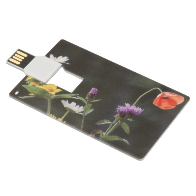 Flash drive travel music ccollection