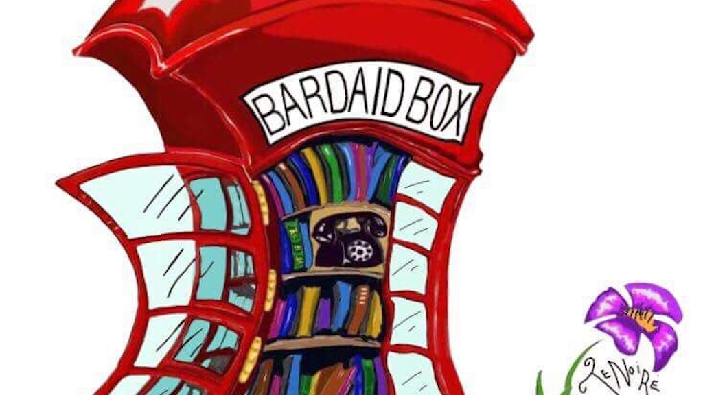 The Bardaid Literary Festival: The Library Project. project video thumbnail
