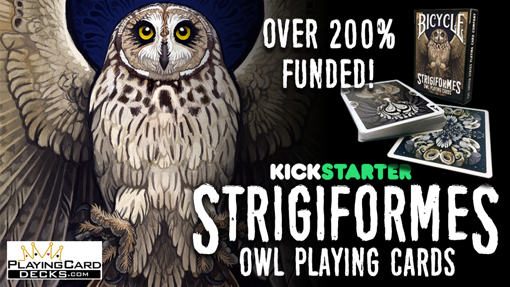 Strigiformes Owl Bicycle Playing Cards Poker Size Deck project video thumbnail