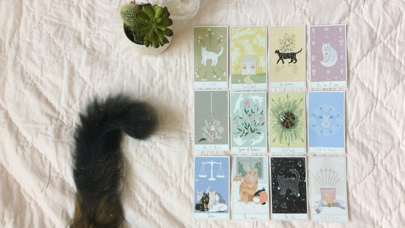 A whimsical tarot deck inspired by cats and their stories.