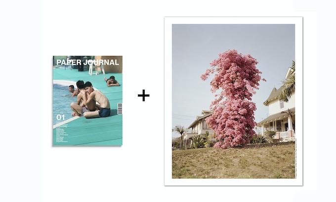 Book and Poster Reward: Paper Journal 01 + Gregory Halpern A1 poster