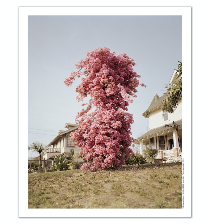 Poster Reward: A1 poster (23.4 x 33.1 in), printed in the U.K. on 120gsm matt paper. Image outtake from Gregory Halpern's ZZYZX (MACK, 2016).