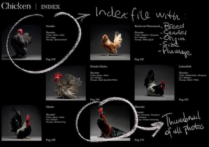 Index File - Thumbnail & Full Details