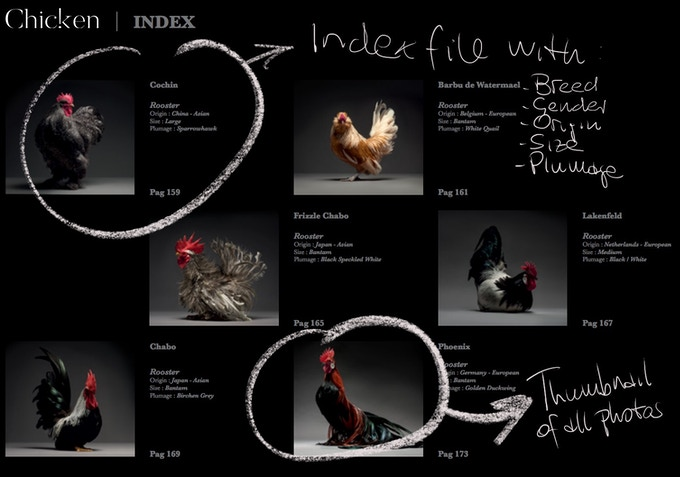 Index File - Thumbnail & Full Details