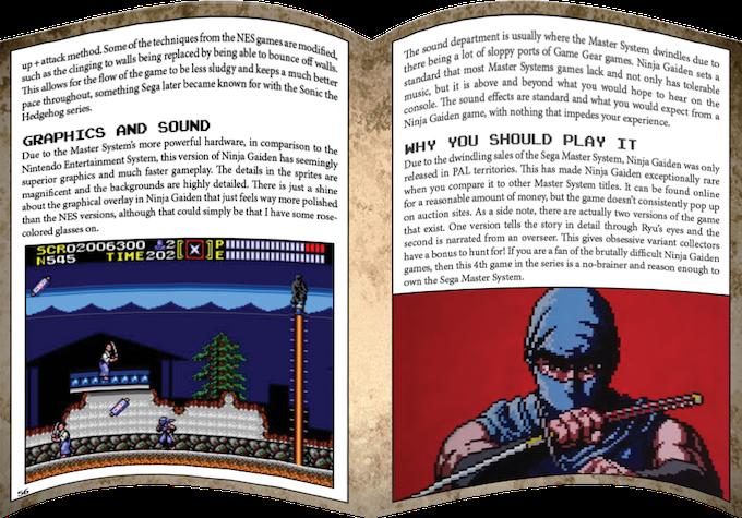 Ninja Gaiden for the Sega Master System