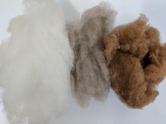 Cream Cashmere - Brown/Taupe Cashmere - Sandstone Camel