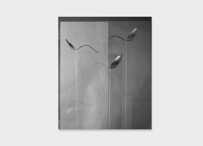 SOLD OUT! Alexandra Lethbridge, Bending Spoons from the series Other Ways of Knowing, 2016. 1/6. 25 x 20cm. Chromogenic colour print.