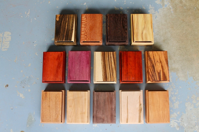 All fourteen Dryad Wood Species