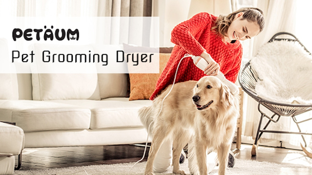 Pet Grooming Dryer=Dryer + Brush for your pet and you. project video thumbnail