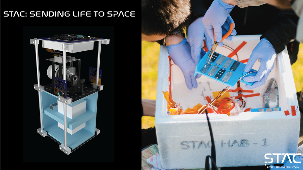 STAC: Researching the Impact of Life in Space project video thumbnail