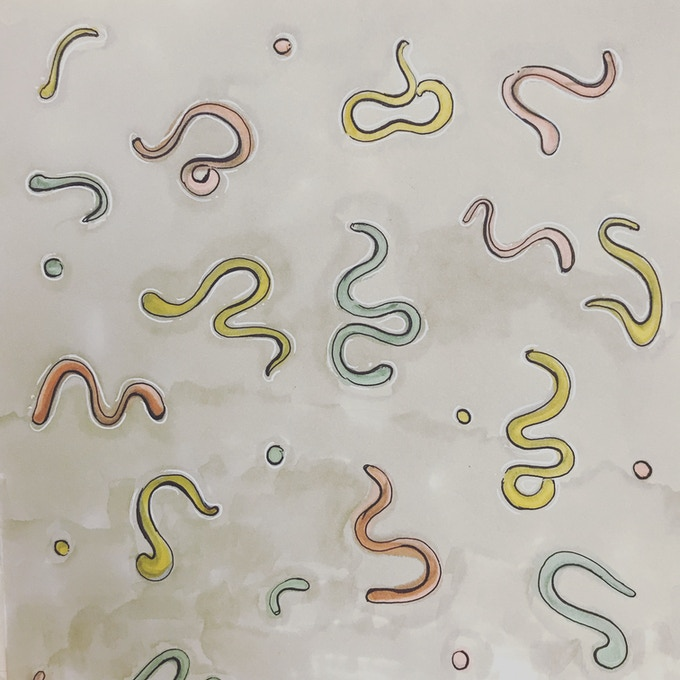 Worm Sketches