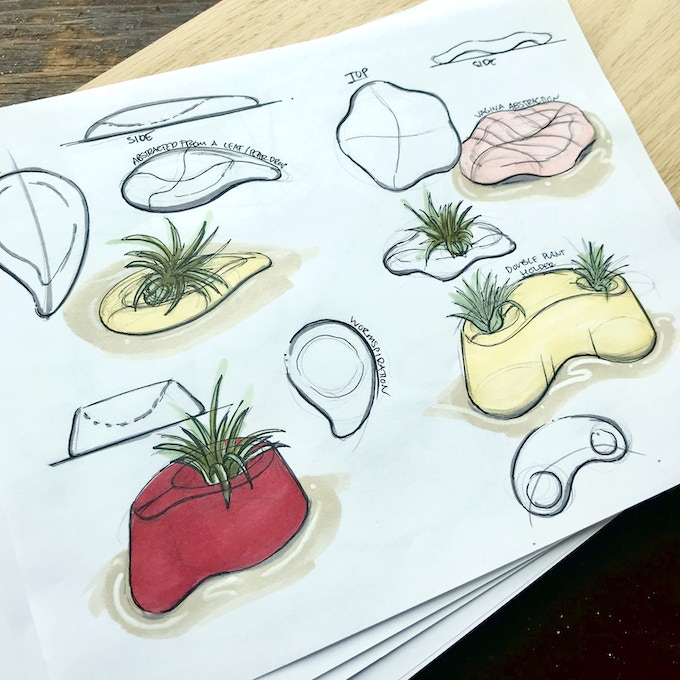 Concept Sketches for Plant Holders