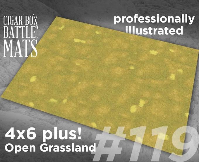 119 Open Grassland