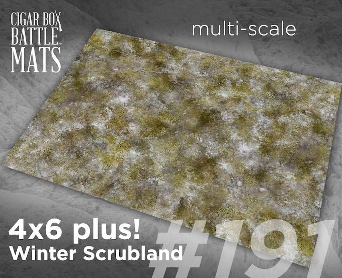 191 Winter Scrubland