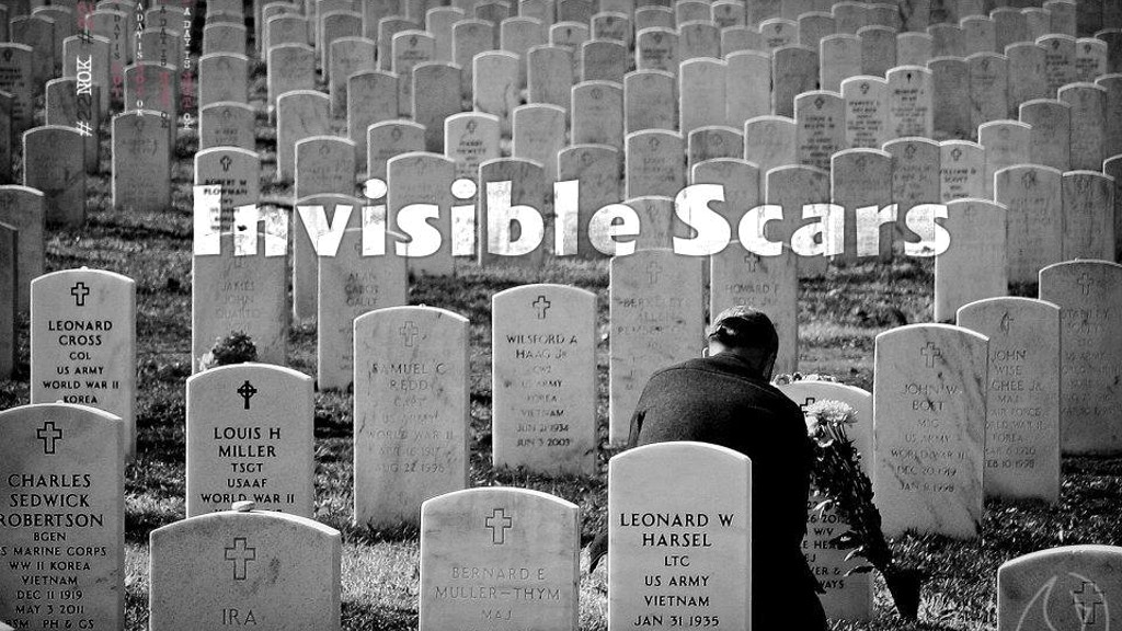 Project image for Invisible Scars: A Warrior's Mind
