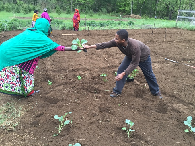 Farming Together